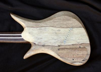 endorsee-gitaar-8